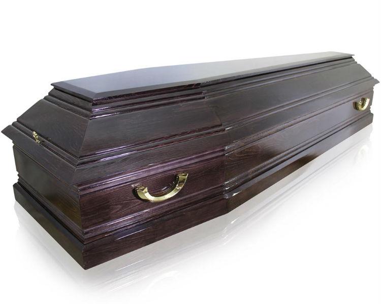 Гроб Пегас-6
